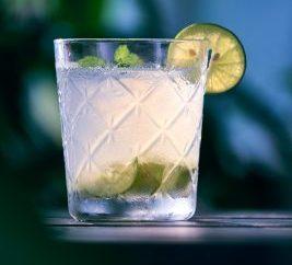 Bardakta Votka lime